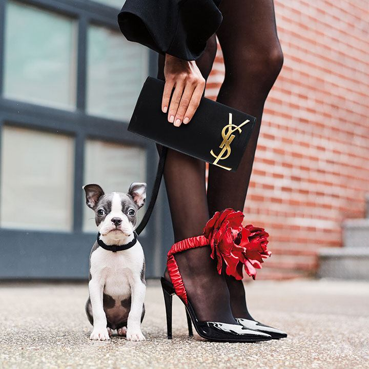 @thedogist makes an appearance in a Neiman Marcus campaign shoot.