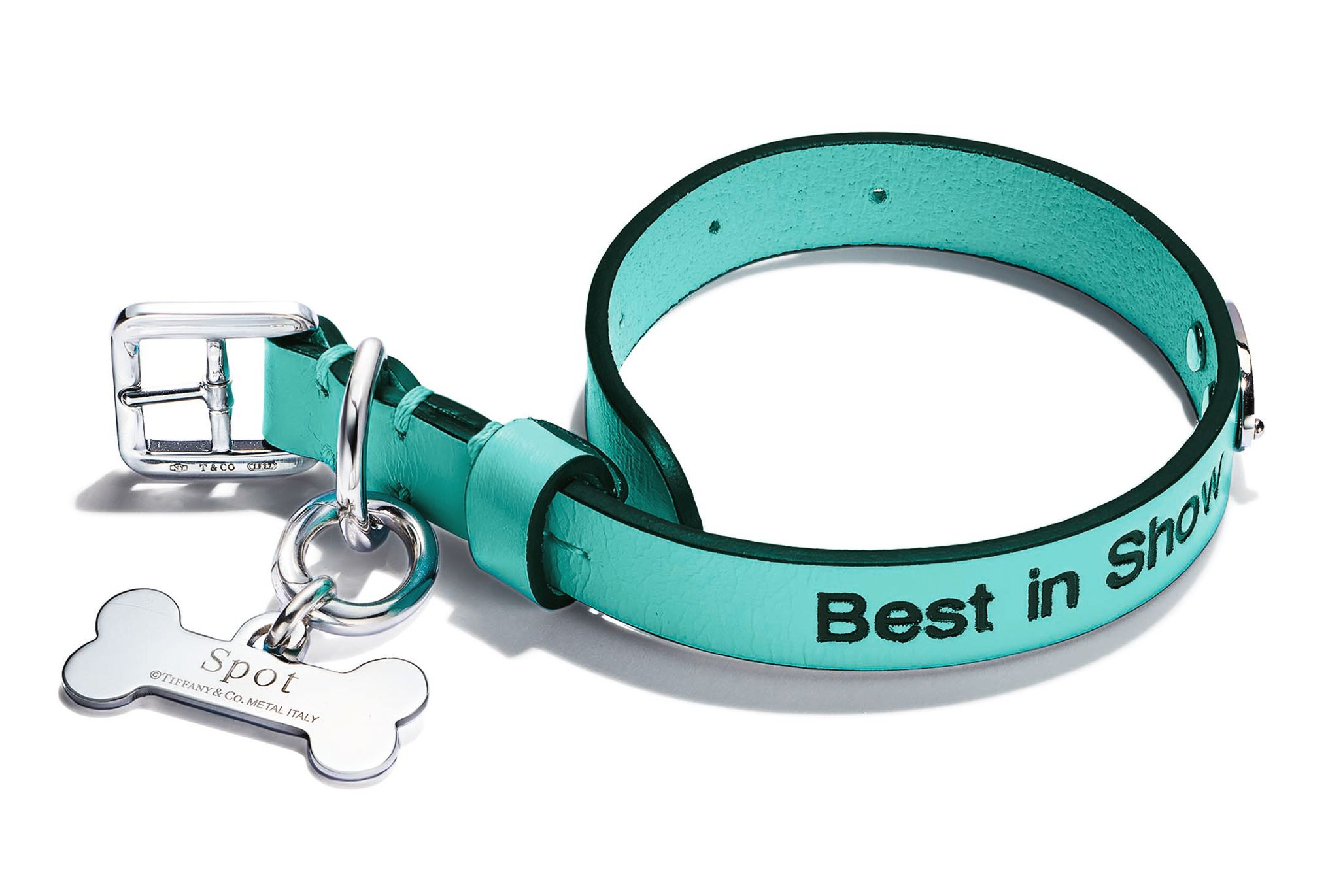 Tiffany Blue Pet Collar in Leather