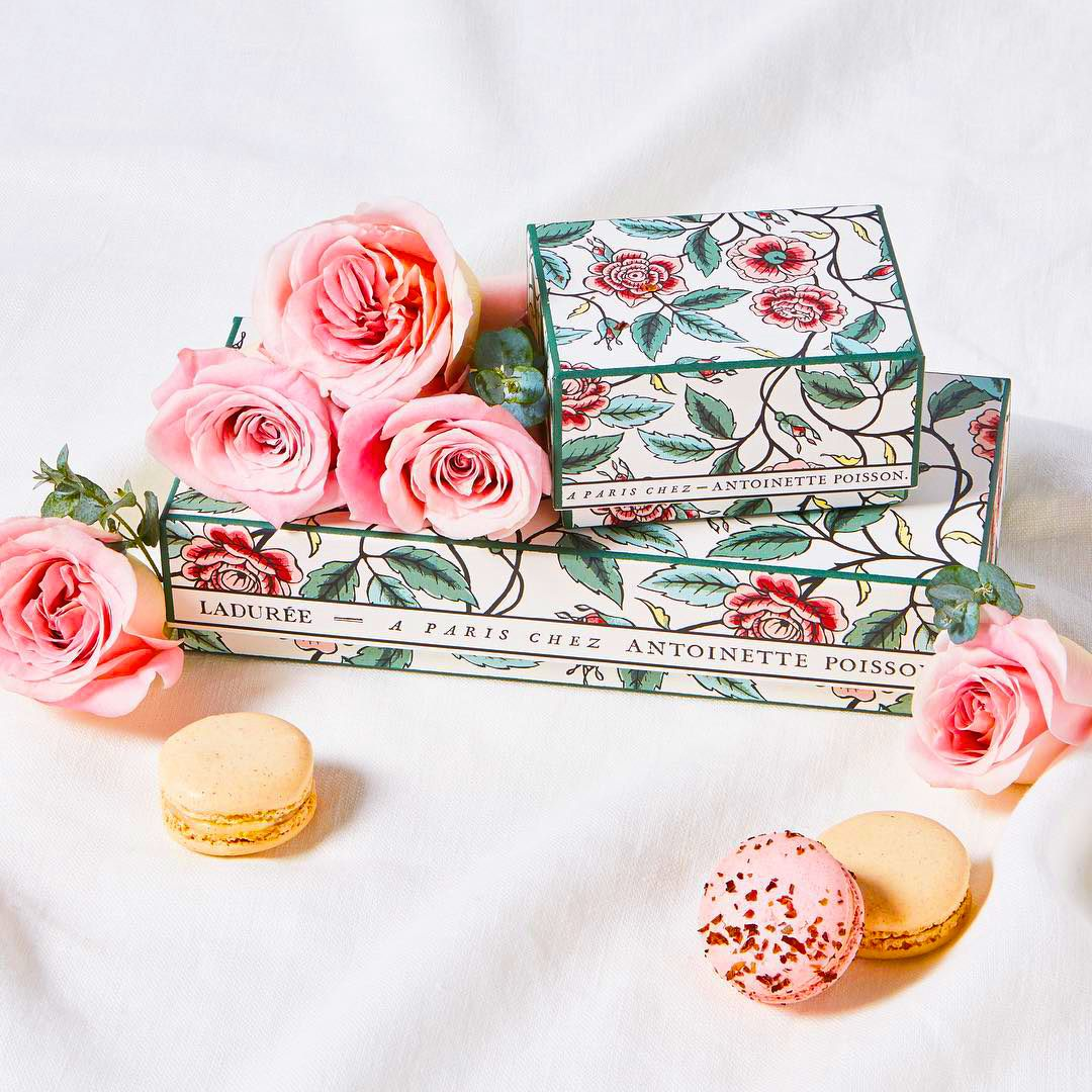 The rose garden limited edition macaron box dreamed up by Ladurée and À Paris chez Antoinette Poisson