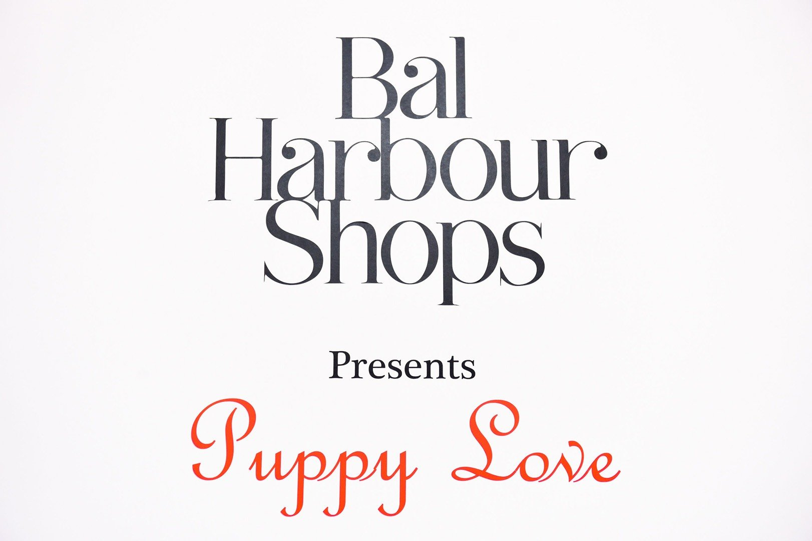 Bal Harbour Shops partnered with Walk in Style for the Animals to host Puppy Love on Wednesday, February 12th benefiting Big Dog Ranch Rescue