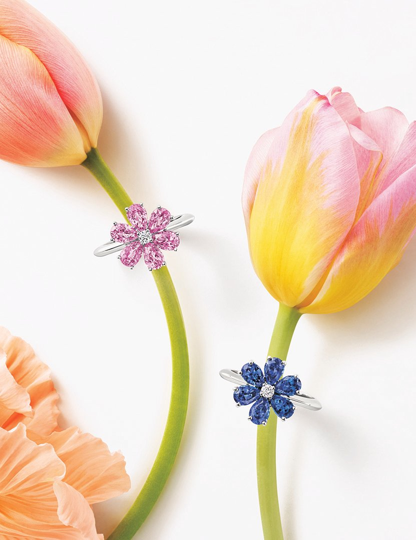 Forget-Me-Not Pink Sapphire and Sapphire rings