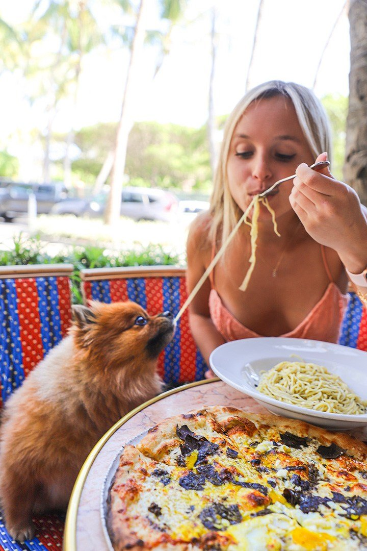 Sami Schnur of @thenaughtyfork dining at Le Zoo Bal Harbour for our #BHSLovetoEat Series.