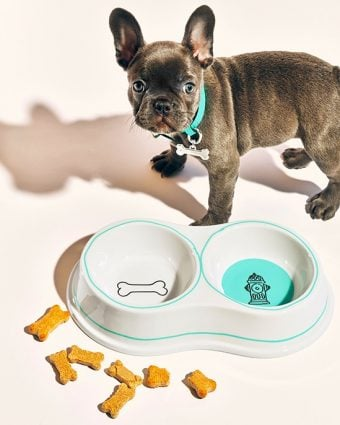 Tiffany & Co. Double Dog Bowl and Pet Collar in Tiffany Blue with Bone Collar Charm.