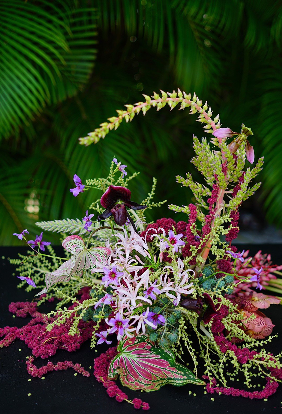 An arrangement by Jenya Flowers featuring bromelias, Lady Slipper orchids, nerine and heart-shaped caladium leaves.