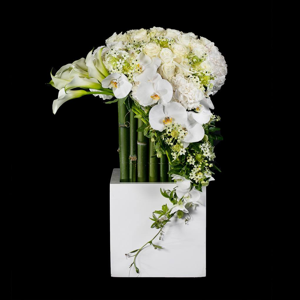 Ovando's Serene Silhouette arrangement from the Black Collection, featuring white roses, calla lilies, hydrangea and phalaenopsis orchids.